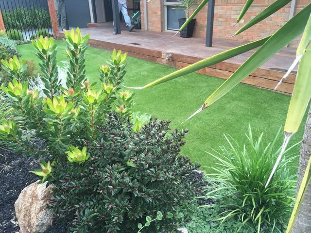 Mount Martha - Synthetic Grass Install 35mm lighter green variety