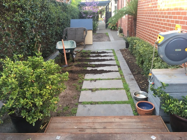 Synthetic grass dig out around existing pavers
